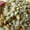 西藏特产 天津青稞米 黑青稞 蓝青稞 西藏蓝青稞米 元麦