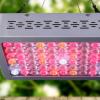 跨境爆款农业蔬菜大棚植物园艺灯全光谱600w大功率led grow light