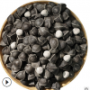 精选印度辣木籽 非洲大颗粒辣木子 一手货源辣木籽批发一件代发