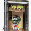 水培花卉植物室内花卉盆栽绿植苗木批发无土栽培花卉园艺招商加盟