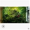园林绿化绿植墙立体墙绿化仿真植物墙盆栽植物批发代理加盟