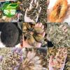 【海味】年货蚝鼓虾米虾皮对虾海星梅鱼淡菜花胶碎响螺碎鱿鱼瑶柱