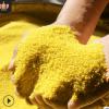 粗粮黄小米 山西五谷杂粮米粥豆浆原料农家月子米批发 黄小米5斤