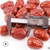 新疆和田枣500g 特产红枣散装 一等大枣四星和田玉枣 18年货