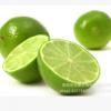 海南优质柠檬粉-浑浊型 食用 100%速溶 喷雾干燥 厂家直销