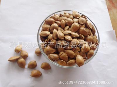 厂家批发零食 开口坚果杏核现货供应 休闲食品